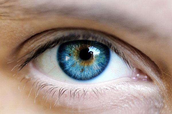 Офтальмология в Киеве (адреса, телефоны, сайты)