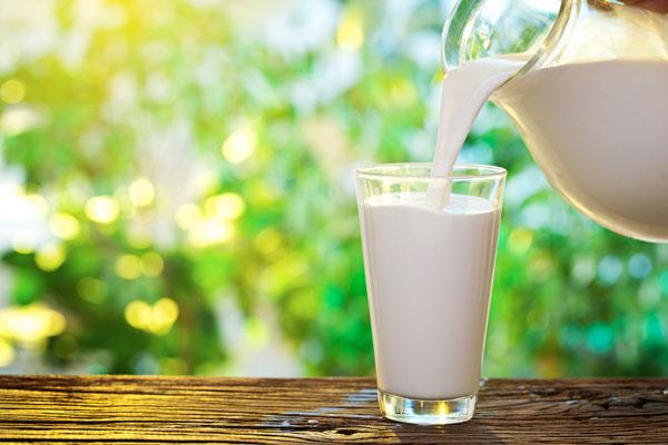 Молоко вредно: миф ли реальность
