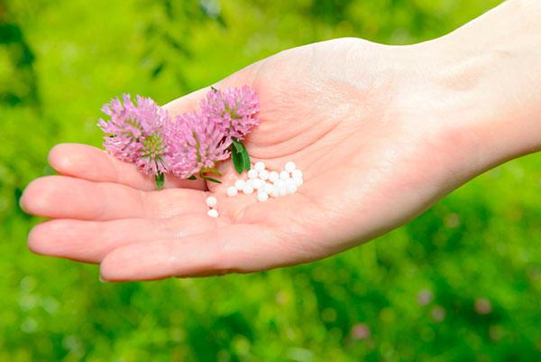 Гомеопатия - исцеление по крупинкам