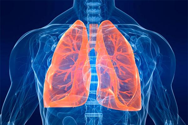 Заболевание органов дыхания. Причины. Симптомы. Лечение
