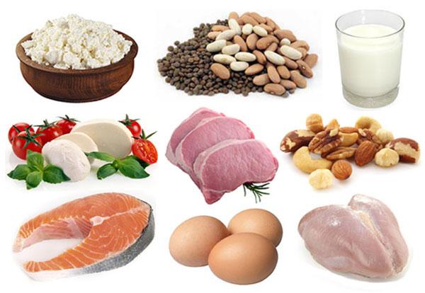 Самые богатые белком продукты