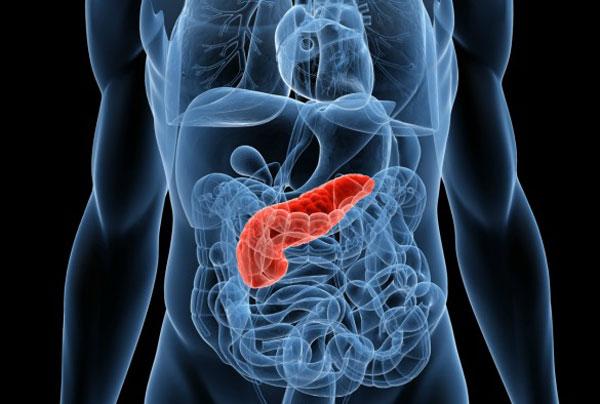 Основные мероприятия профилактики панкреатита