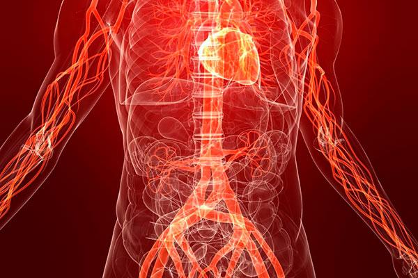 9 продуктов, которые способны эффективно очистить артерии
