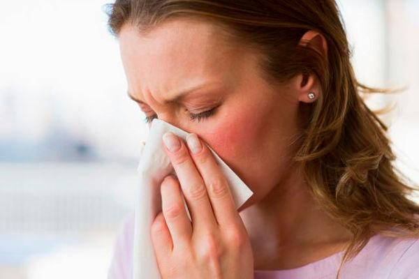 Аллергия на шерсть домашних животных