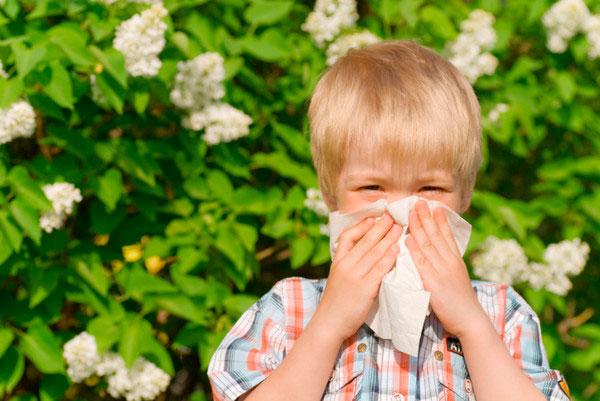 6 возможных причин усиления аллергии