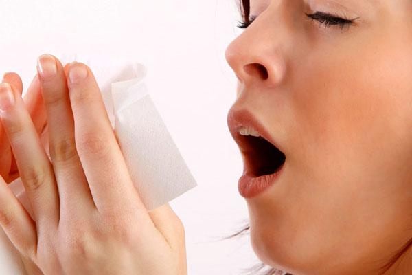 7 растений, способных помочь в борьбе с аллергиями и астмой