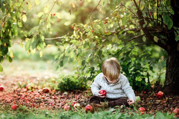 Укус насекомого у ребенка – что делать