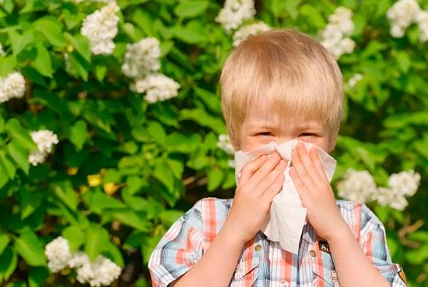 Как проводятся кожные пробы на аллергены у детей